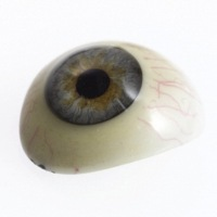 1900 Glass Eye.jpg