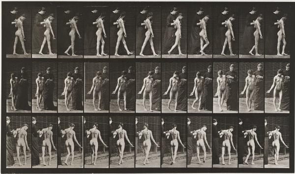 Muybridge541.jpg